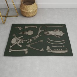 Animal Bones Anatomical Illustration on Dark Green Rug