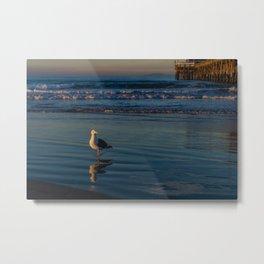 Sunrise Seagull Reflections II Metal Print