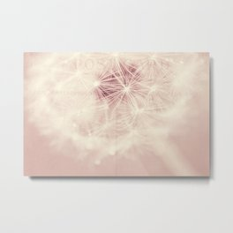 dandelion postcard Metal Print