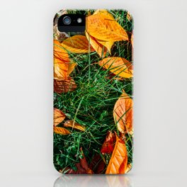 Orange Autumn Leaves Background In Fall Season, Autumn Season, Fall Background, Falling Leaves, Art iPhone Case