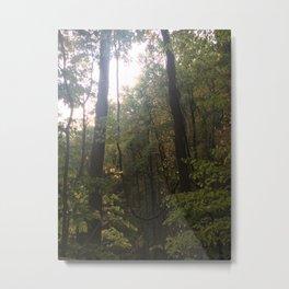 tropical rainforest Metal Print