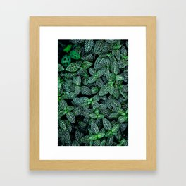 I Beleaf In You Framed Art Print