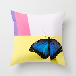 Morpho butterfly sitting on the colored background Throw Pillow