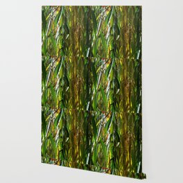 Weeping Willow in Autumn Wallpaper