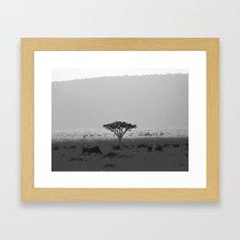 Migration in the Maasai Mara Framed Art Print