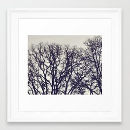 Sunrise Trees Framed Art Print