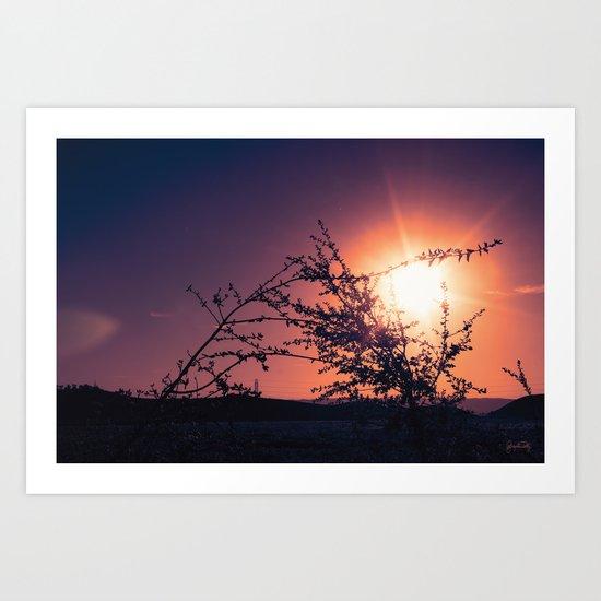 Catching the Moment (Coral Orange Sunset, Dark Violet sky) Art Print