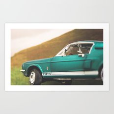 Mustang Art Print