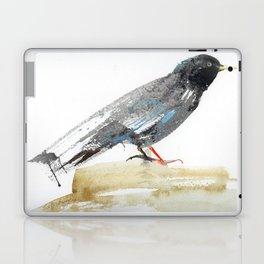Australian Starling Laptop & iPad Skin