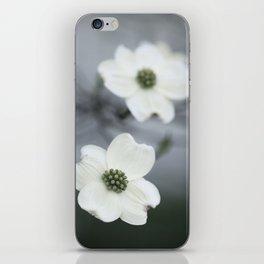 Dogwood Blossoms iPhone Skin