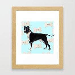 Rufus bb Framed Art Print