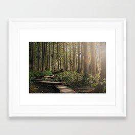 Adventure Nature Path Framed Art Print