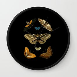 Moths Butterflies In Darkness Vintage Scientific Illustration Encyclopedia Diagram Wall Clock