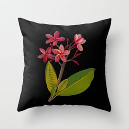 Plumeria Rubra Mary Delany Floral Paper Collage Delicate Vintage Flowers Throw Pillow