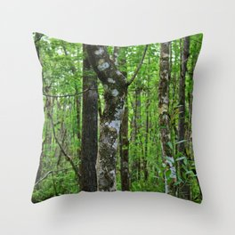 Sultry and Sunlit Throw Pillow
