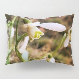 fragile Pillow Sham