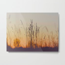 Ambient Colorful Red Orange Sunset With Wheat Silhouette Metal Print