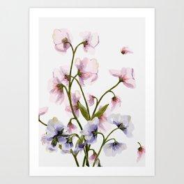 Flowers -a57 Art Print