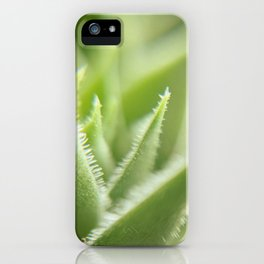 Sempervivum iPhone Case