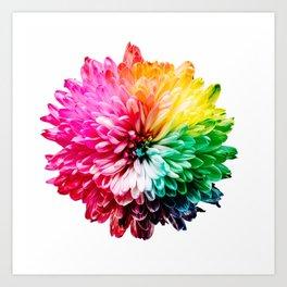 Color flower 2 Art Print