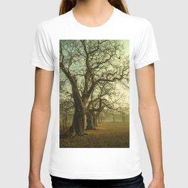Winter Trees T-shirt