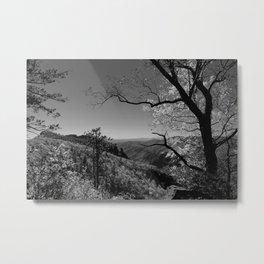 Linville Gorge Metal Print