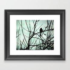 Bird silhouette Framed Art Print