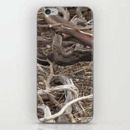 TEXTURES - Manzanita in Drought Conditions #3 iPhone Skin