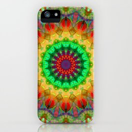 Healing Mandala 02 iPhone Case