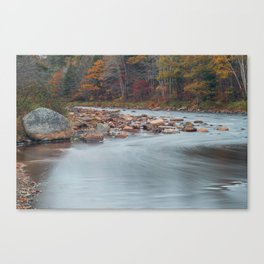 Gold River Fall Colours Canvas Print