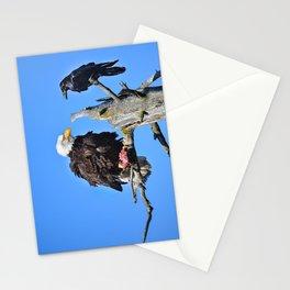 Avian Showdown Stationery Cards