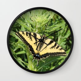 Swallowtail at Rest on Greenery Wall Clock