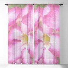 Mekong Delta Flora Sheer Curtain