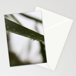 Drop 1 Stationery Cards