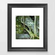 Price Park III Framed Art Print