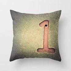 1. Throw Pillow