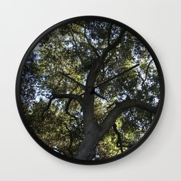 Tree of light Wall Clock