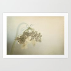 Touched By The Light Art Print