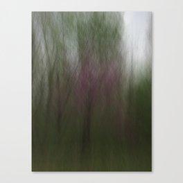 Slower .014 Canvas Print