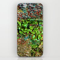 plant iPhone & iPod Skins featuring plant by ebdesign