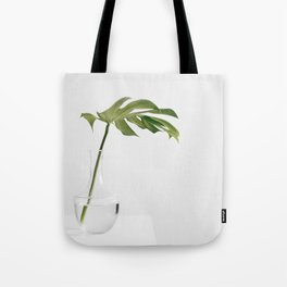Single Monstera Leaf In Clear Glass Zen Minimalist House Plant Photo Tote Bag