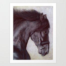 Horse Head - Ballpoint Pen Art Print