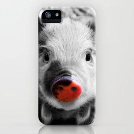 BW splash sweet piglet iPhone Case