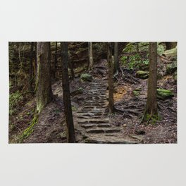 steps in the forest Rug