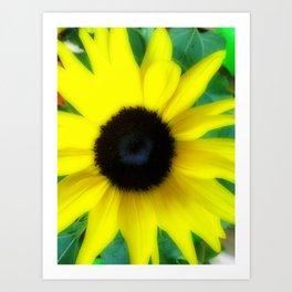 Remembering days of summer- Sunflower Art Print