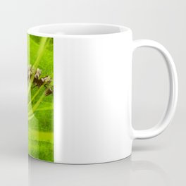 Biohazard Skull Coffee Mug