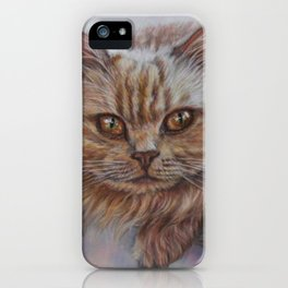 Cattitude - Long Haired Cat Staring at You iPhone Case