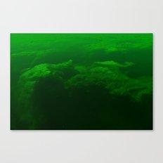 Verdant Lake Canvas Print