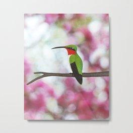 ruby throated hummingbird - male on pink bokeh Metal Print