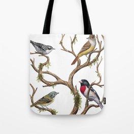 Four Songbirds Tote Bag